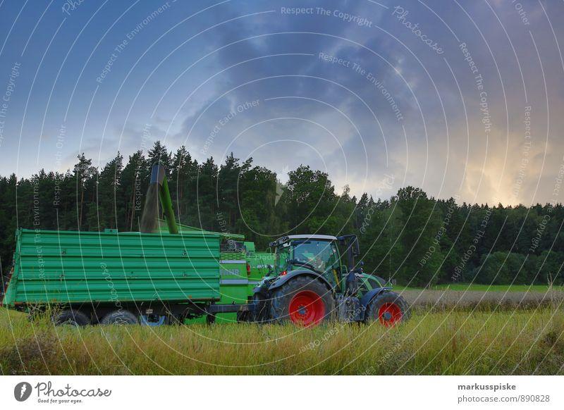 rapsöl ernte Pflanze Landschaft Arbeit & Erwerbstätigkeit Wachstum Erfolg Landwirtschaft fahren Kräuter & Gewürze Beruf Ernte Bioprodukte Forstwirtschaft