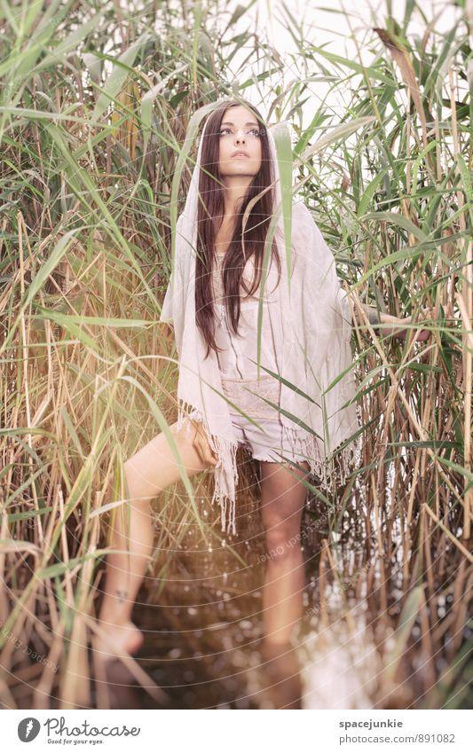 Golden Place Mensch feminin Junge Frau Jugendliche Erwachsene 1 18-30 Jahre Natur Landschaft Pflanze Wasser Sonnenlicht Sommer Herbst Seeufer Flussufer