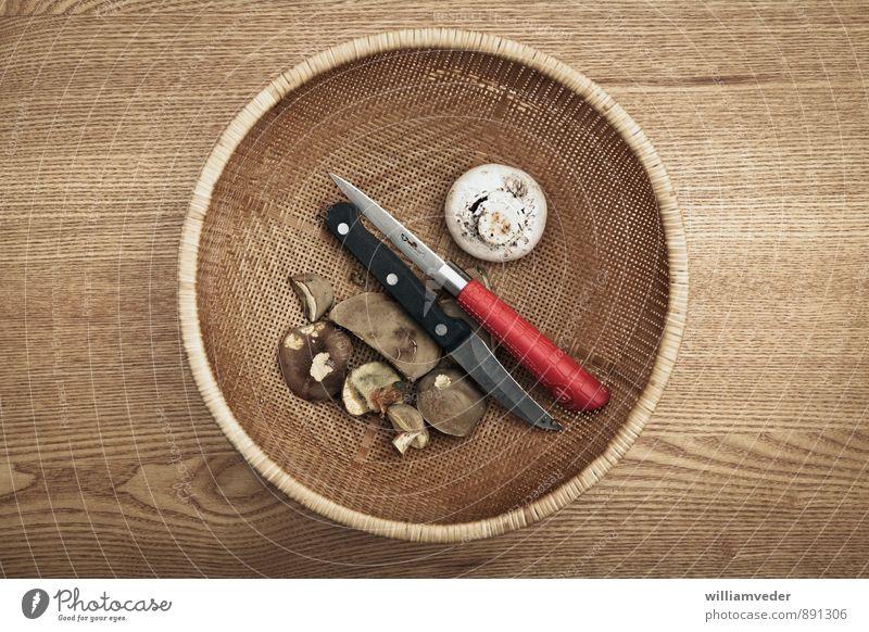 Pilze und Messer in einem Korb Natur Ferien & Urlaub & Reisen Pflanze rot Umwelt gelb Herbst braun Freizeit & Hobby gold Ausflug Abenteuer Pilz Messer Pilzsucher
