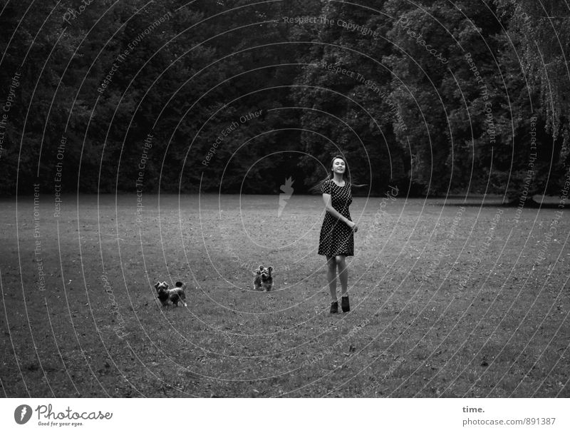 . feminin 1 Mensch 18-30 Jahre Jugendliche Erwachsene Natur Landschaft Baum Park Wiese Kleid brünett langhaarig Tier Haustier Hund 2 lachen laufen Fröhlichkeit
