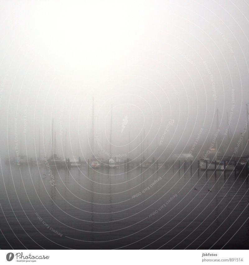 Flensburger Förde Umwelt Natur Landschaft Wetter schlechtes Wetter Nebel Regen gefährlich Nervosität Hafen Hafenstadt Wasserfahrzeug Segelboot Segelschiff