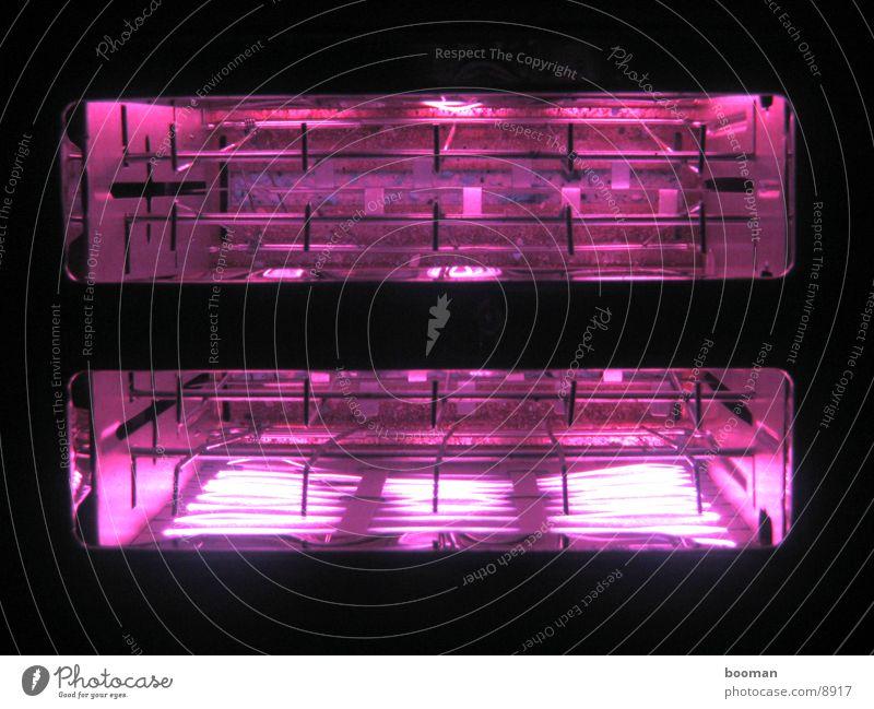 toaster Licht glühen Makroaufnahme Haushalt dunkel Nacht Fototechnik hell