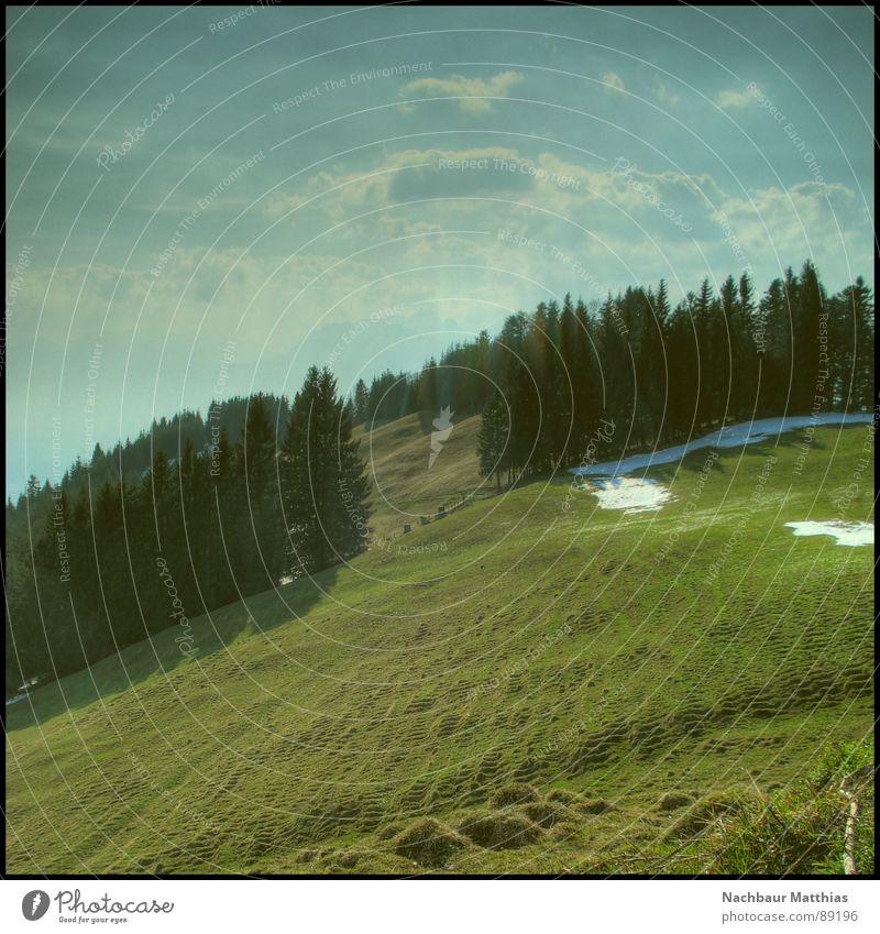 nic e rutan II Wald Wiese Zaun grün Baum Luft HDR Wolken Erholung ruhig Hoffnung Sommer Natur Himmel Wege & Pfade blau Berge u. Gebirge Landschaft