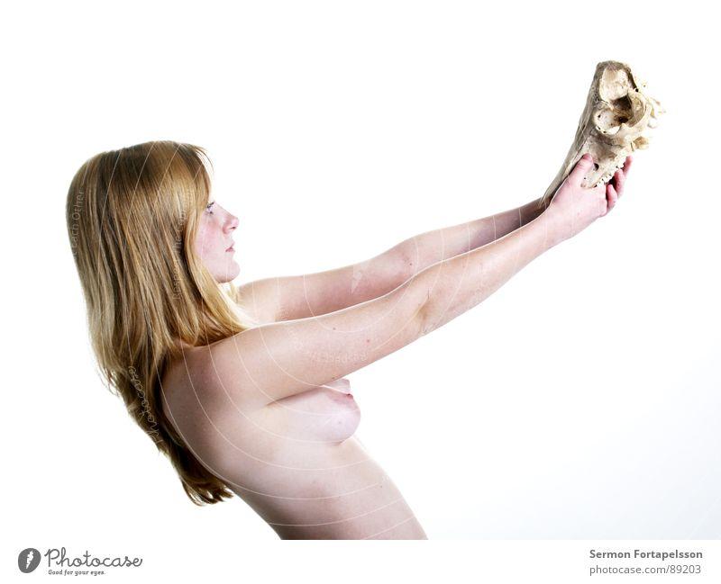 D. van der Nies 7215 Frau weiß Gesicht Auge Tier Akt nackt Tod Haare & Frisuren Kopf hell Haut blond weich bleich hart