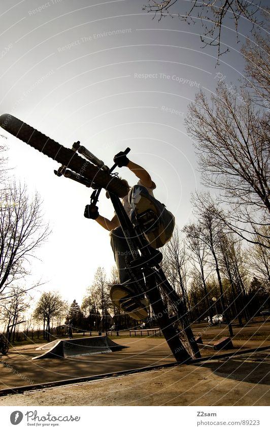 up in the sky - I Jugendliche Himmel Baum Sonne Sommer Sport springen Stil Park Wärme Fahrrad hoch Aktion modern gefährlich fahren