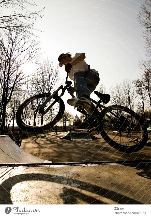 up in the sky - II Jugendliche Himmel Baum Sonne Sommer Sport springen Stil Park Wärme Fahrrad hoch Aktion modern gefährlich fahren