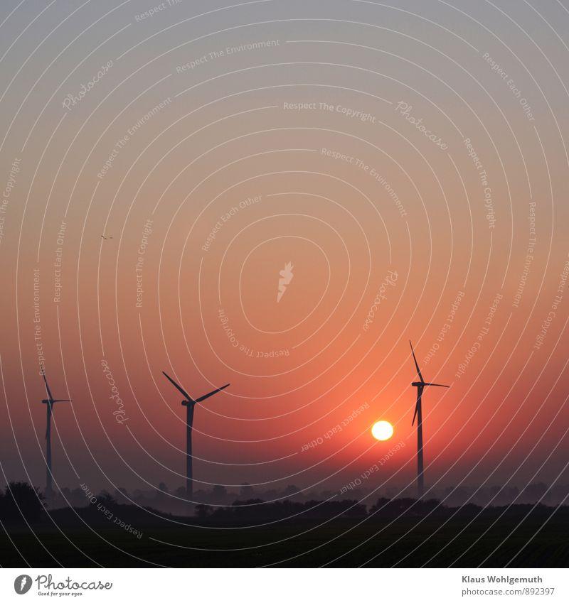Herbstmorgen Ferne Sonne Technik & Technologie Energiewirtschaft Erneuerbare Energie Windkraftanlage Umwelt Natur Landschaft Himmel Wolkenloser Himmel Feld blau