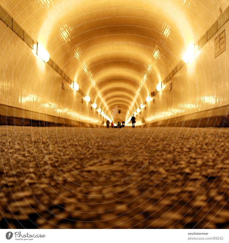 Tunnelblick Teer tief lang Lichtspiel Froschperspektive Fußgänger Neonlicht Platzangst gelb grau Wand eng Reflexion & Spiegelung rund Stadt Hamburg Mensch Elbe