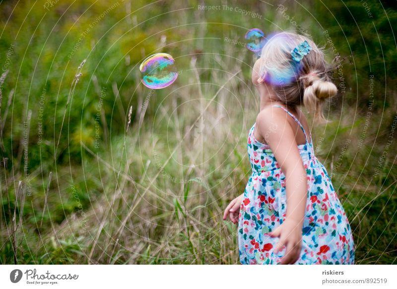 seifenblasen fangen Mensch Kind Natur Pflanze grün Sommer Mädchen Freude Umwelt Herbst Wiese feminin natürlich Spielen Garten Park