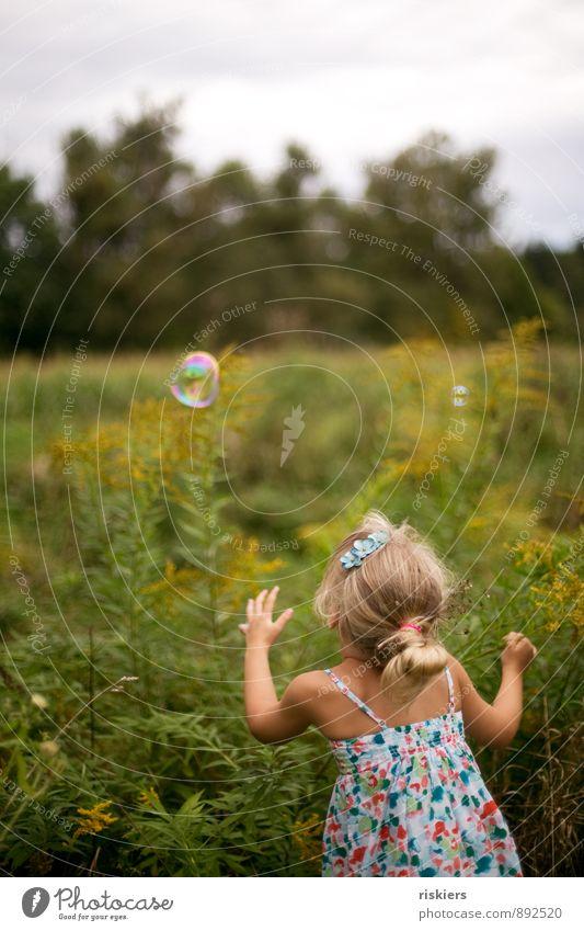 seifenblasenfangen Mensch Kind Natur Sommer Erholung Freude Mädchen Umwelt Wiese feminin natürlich Spielen Glück Garten Zufriedenheit Kindheit