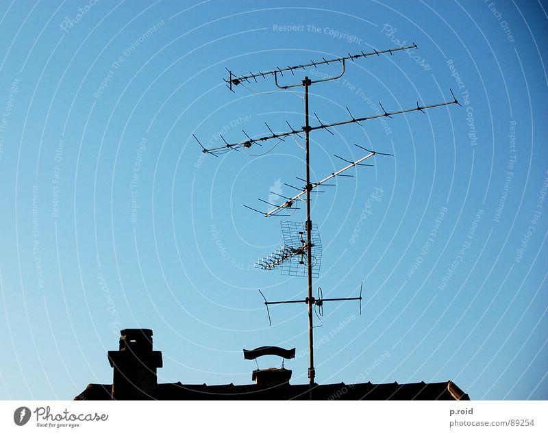 über den dächern. Himmel blau Sommer Haus Dach Fernsehen Klarheit Backstein Skyline Top Schornstein Antenne Sender