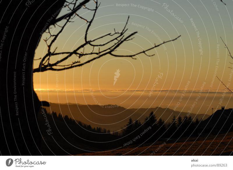 Inversion romantica Himmel Ferien & Urlaub & Reisen schön Sonne Berge u. Gebirge Gefühle orange Schwarzwald Sonnenbad Abenddämmerung Planet gemalt Bronze