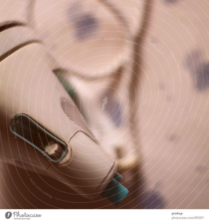 Dampfmaschine - II bügeln Bügeleisen Elektrisches Gerät Haushälterin Haushalt Arbeit & Erwerbstätigkeit dämpfen Bügelbrett Vogel Baum Elektrizität Physik heiß