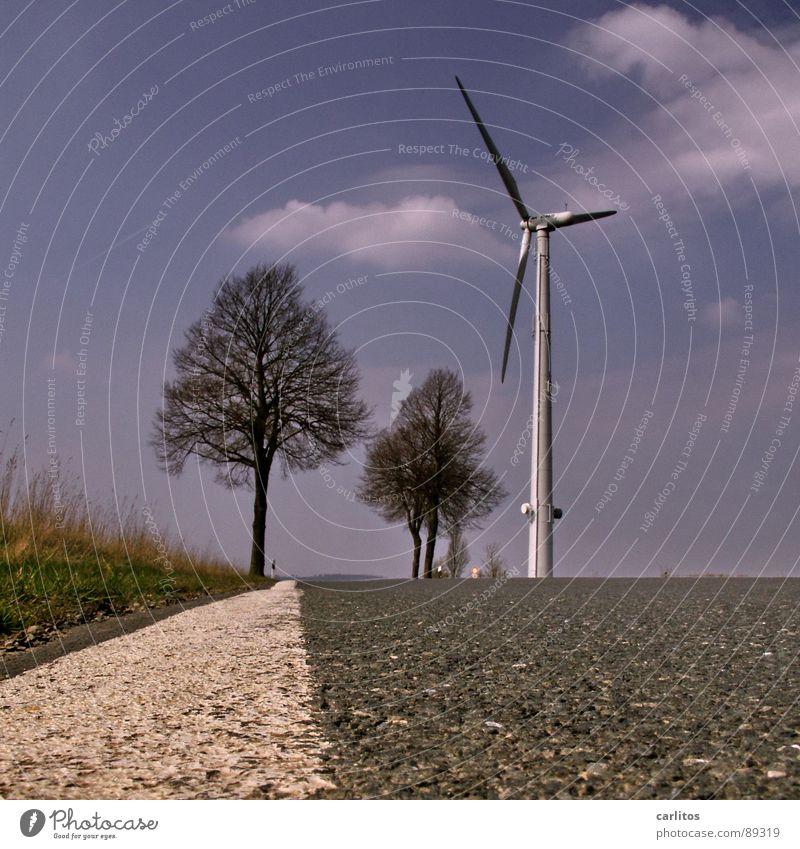 Der Weg .. Himmel Baum Ferien & Urlaub & Reisen Wolken Ferne Straße Leben Wege & Pfade Stein Horizont liegen Bodenbelag Asphalt Unendlichkeit Sehnsucht Windkraftanlage
