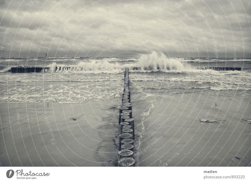 Wellenbrecher Natur Landschaft Urelemente Sand Wasser Himmel Wolken Horizont Frühling Wetter schlechtes Wetter Wind Küste Strand Ostsee Menschenleer schwarz