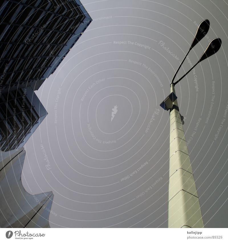 berliner pflanze II Armutsgrenze Hinterhof Plattenbau Fassade Lichthof Fenster Brandmauer Alexanderplatz Osten Laterne Wohnanlage Treppe Astronaut
