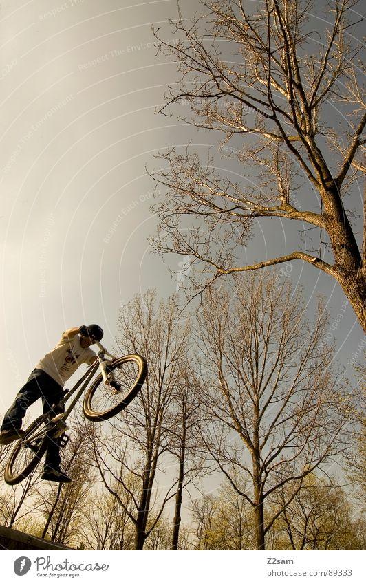 up in the sky III Himmel Jugendliche Baum Sommer Wärme springen Stil Park Fahrrad hoch modern gefährlich Aktion fahren Physik aufwärts