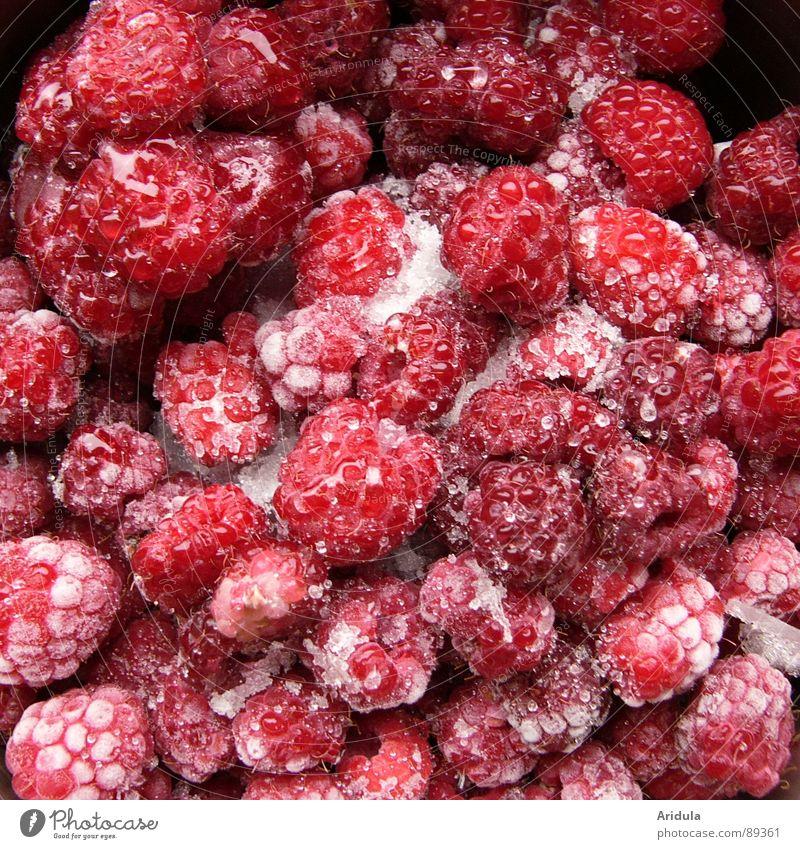 eisige früchtchen rot Sommer Ernährung Eis Gesundheit Frucht gefroren lecker Vitamin Himbeeren tauen