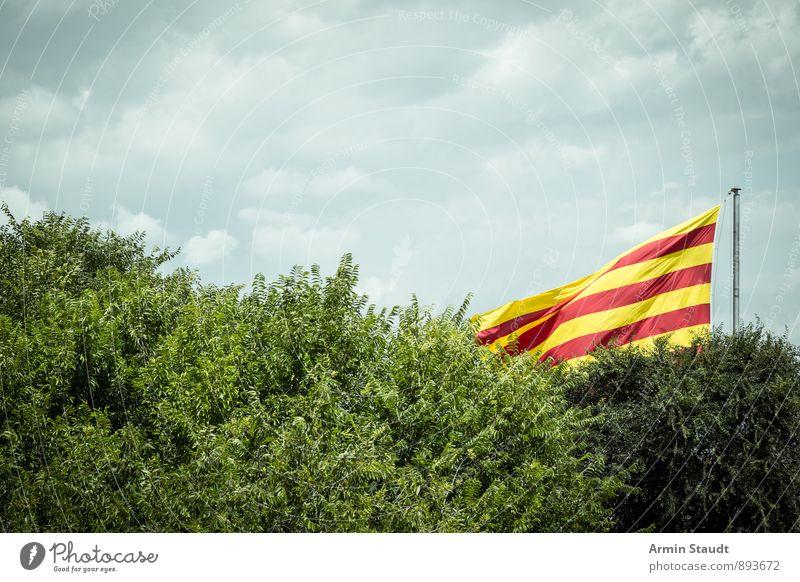 Viva España Natur Luft Himmel Wolken Wind Baum Sträucher Spanien Zeichen Fahne hängen authentisch gelb rot Ferien & Urlaub & Reisen verdeckt Nationalflagge