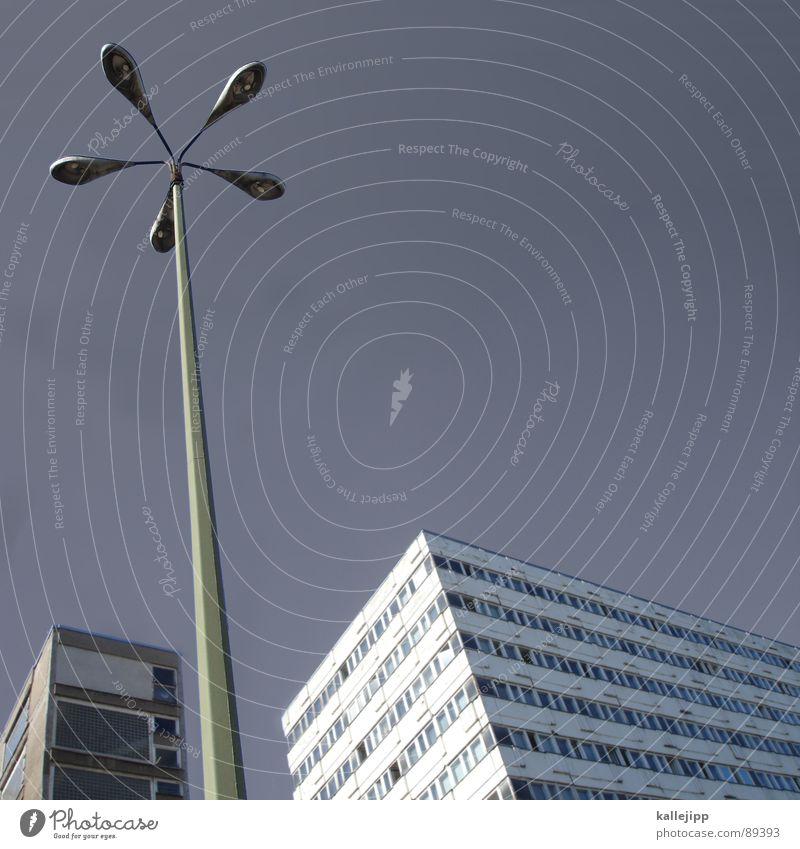 berliner pflanze III Armutsgrenze Hinterhof Plattenbau Fassade Lichthof Fenster Brandmauer Alexanderplatz Osten Laterne Wohnanlage Treppe Astronaut
