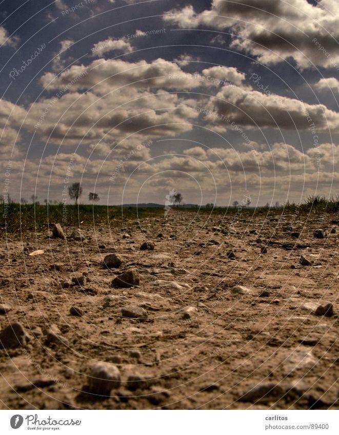 WASSER ...ich brauch' Wasser Steppe trocken Dürre verdursten Kies Geröll Einsamkeit vergessen verloren Aussiedler Einsiedler Froschperspektive Horizont Wolken