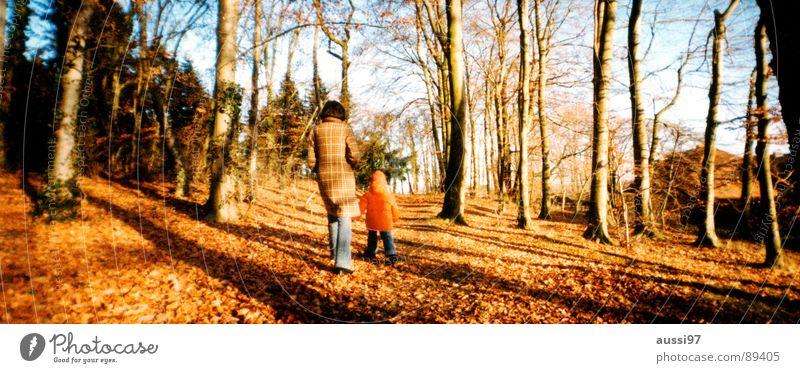 Herbstspaziergang Kind Baum Blatt Wald Herbst Traurigkeit groß Familie & Verwandtschaft Mutter Spaziergang Mensch Panorama (Bildformat) Eltern Blues