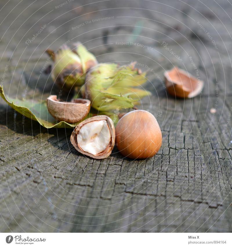 Haselnüsse aus der Türkei Lebensmittel Ernährung Bioprodukte Natur Herbst Blatt Wald Holz Gesundheit lecker braun Haselnuss Nuss Nussschale Haselnusskern