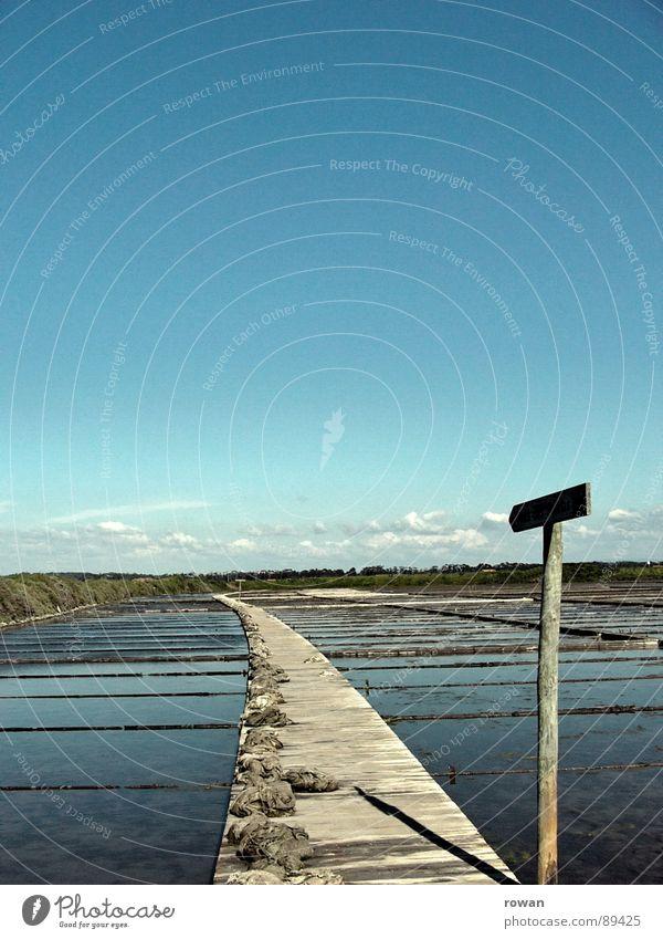 Hier lang! gekrümmt Steg Holz Richtung Orientierung Saline kommen Meer Raster Hinweisschild Wege & Pfade Pfeil Schilder & Markierungen Becken Salz Entsalzen