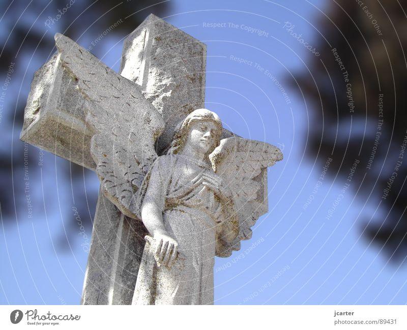 versteinert Himmel Tod grau Stein Traurigkeit Religion & Glaube Rücken Hoffnung Trauer Engel Frieden Flügel Vergänglichkeit Statue Verzweiflung heilig