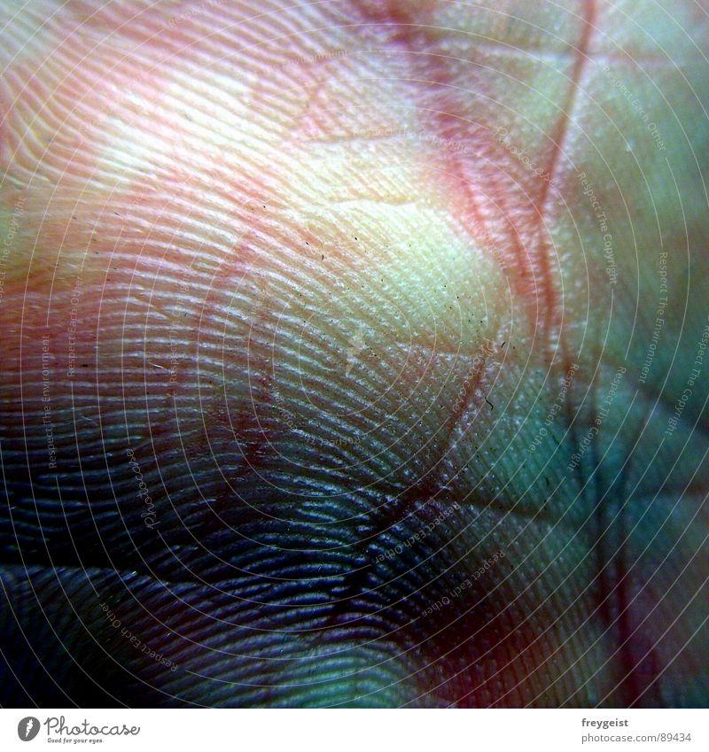 Shocking Fifty blau Hand Angst rosa Haut violett nah Gewalt Rhythmus Panik 50 schlagen Schlag Blattadern Takt Organ