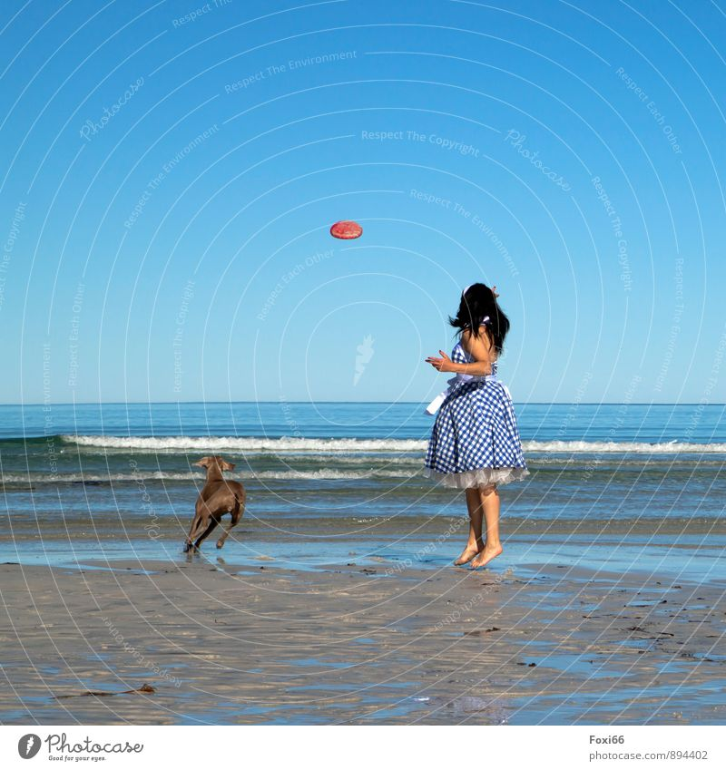 Gruppenfeeling....ein tolles Gefühl Hund Mensch Frau blau weiß Wasser Sommer Tier Strand gelb Erwachsene feminin Küste Glück Sand Horizont