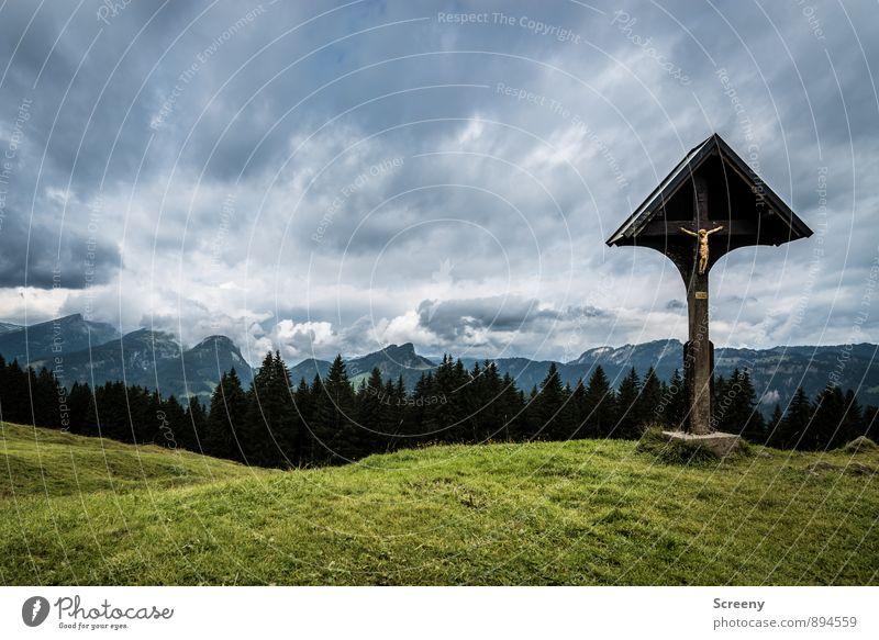Dem Himmel nahe... Ferien & Urlaub & Reisen Tourismus Ausflug Berge u. Gebirge wandern Natur Landschaft Wolken Sommer schlechtes Wetter Wiese Wald Hügel Alpen