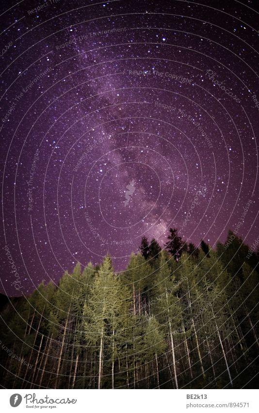I´m so small Natur Landschaft Himmel Stern Wald Alpen Blick leuchten ästhetisch fantastisch frei gigantisch Unendlichkeit stark viele violett weiß schön ruhig