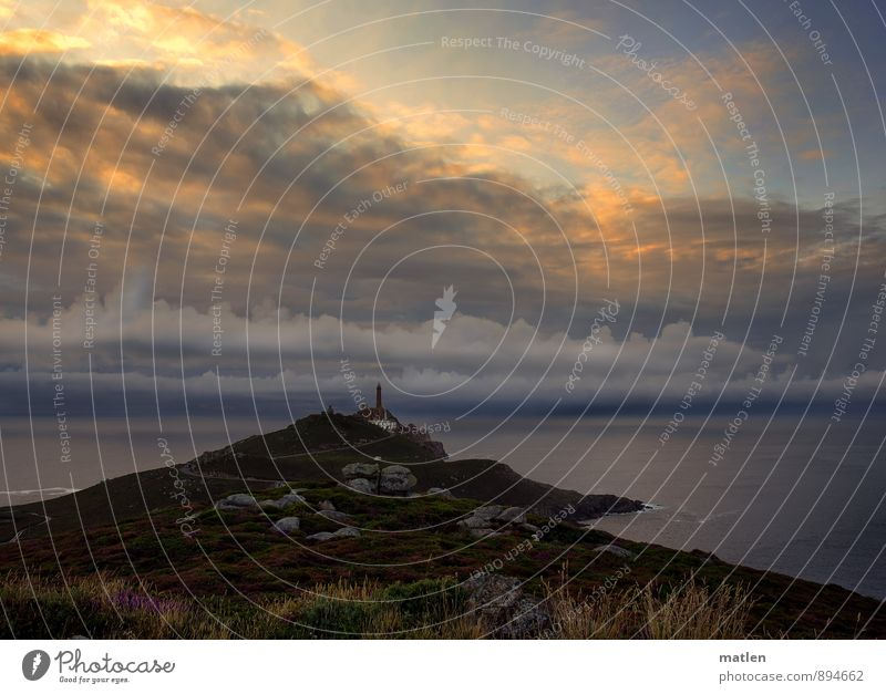 am Ende der Welt I Landschaft Pflanze Himmel Wolken Gewitterwolken Horizont Sonnenaufgang Sonnenuntergang Sommer Wetter schlechtes Wetter Gras Moos Felsen Küste