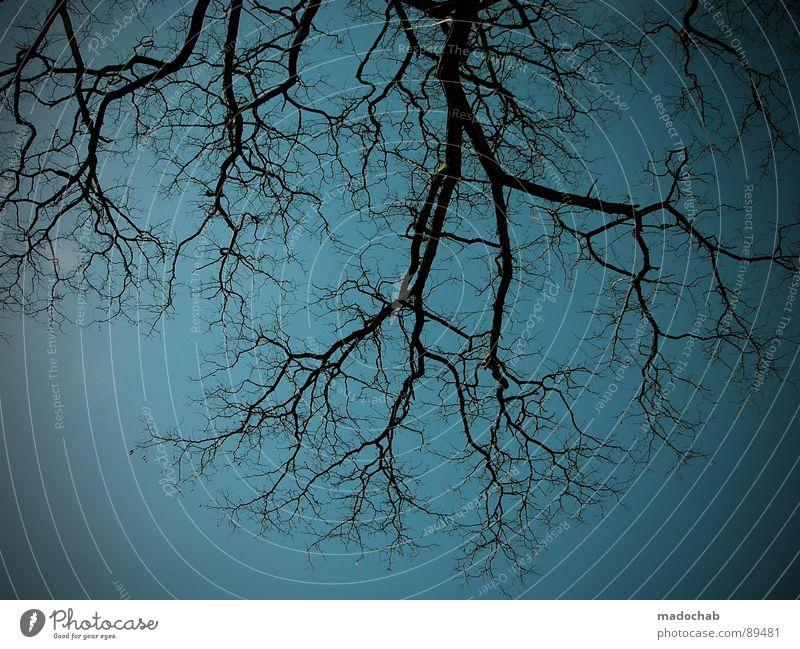 BÖSE Himmel Natur Einsamkeit Wand Holz Freiheit Mauer Traurigkeit Lampe offen Angst trist Suche Stoff Trauer einfach