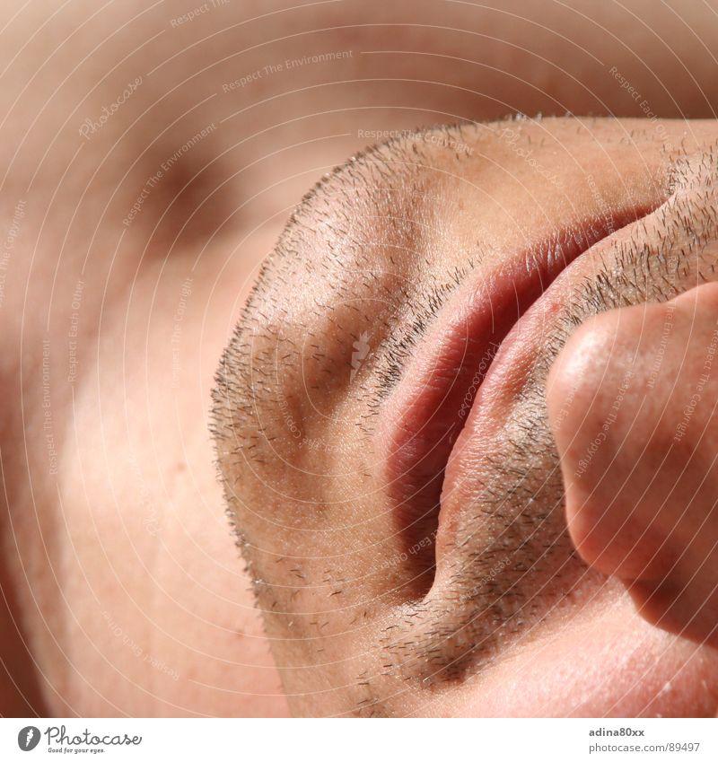 masculine Mensch Mann schön Freude lachen Haut maskulin Nase Lippen rein Bart Partnerschaft atmen fein Kinn Moral