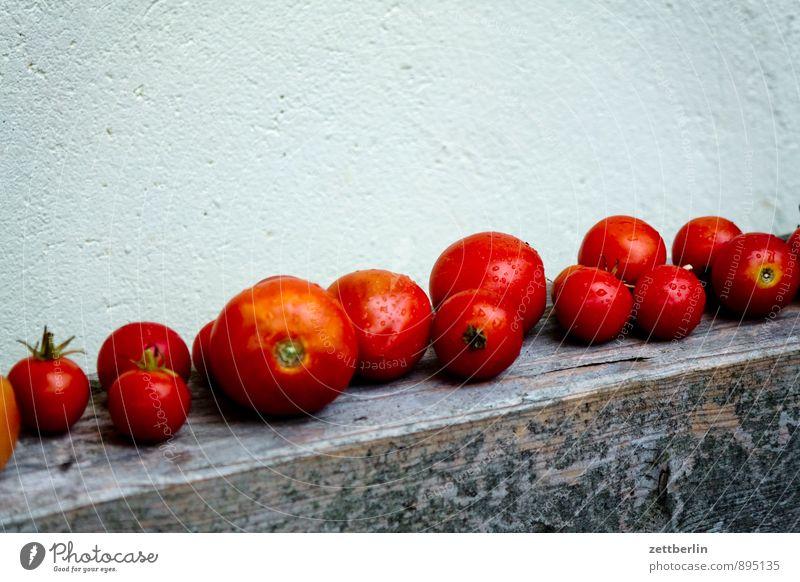 Tomaten Reihe Ernte Erntedankfest liegen Lager gelagert Menschenmenge Garten Schrebergarten Ernährung Gesunde Ernährung Speise Essen Foodfotografie Vitamin