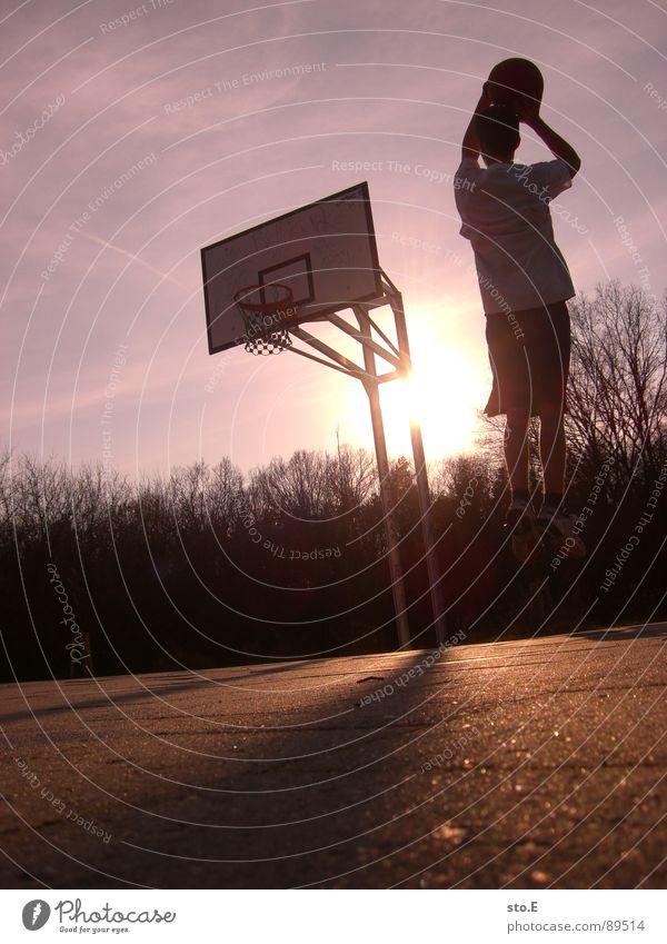 sprungbillard blenden Sonnenuntergang Schatten Baum Sträucher Asphalt Wolken rot violett Basketballkorb Basketballer springen Korb Stab Farbe Jugendliche