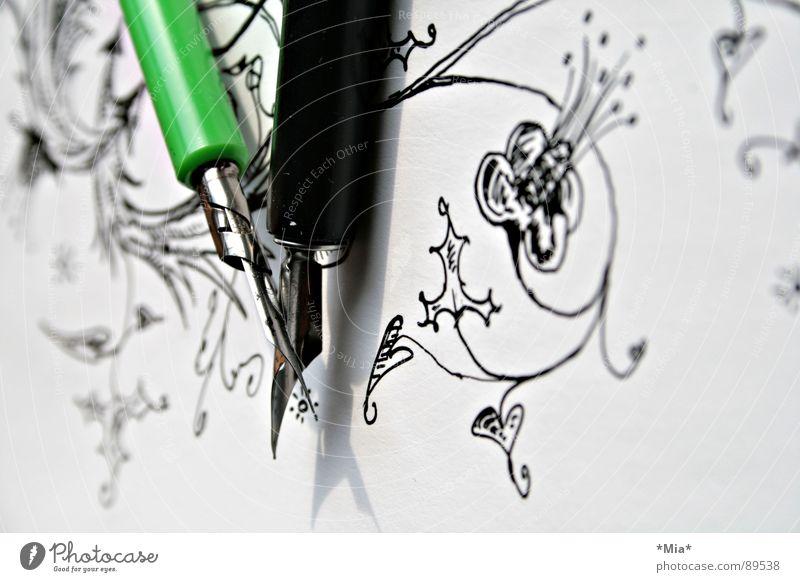 Schnörkel Tusche Papier gemalt gezeichnet Blume weiß schwarz grün Feder Bild Schatten