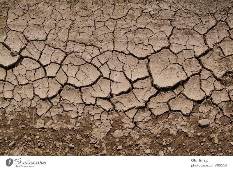Die Kruste Strukturen & Formen Hintergrundbild Riss braun beige unpersönlich Ödland Erde Sand Trauer Verzweiflung Wallpaper Landschaft Tod leer