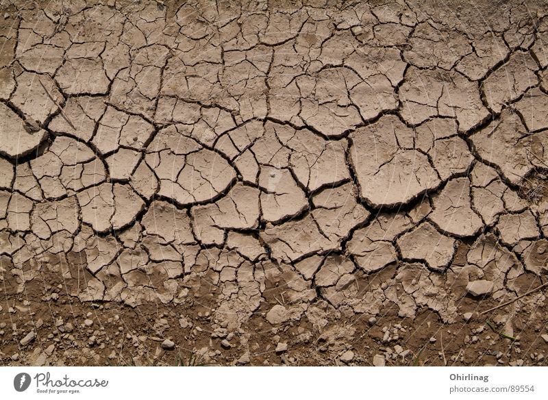 Die Kruste Tod Sand Landschaft braun Hintergrundbild Erde leer Trauer Verzweiflung Riss beige Ödland unpersönlich