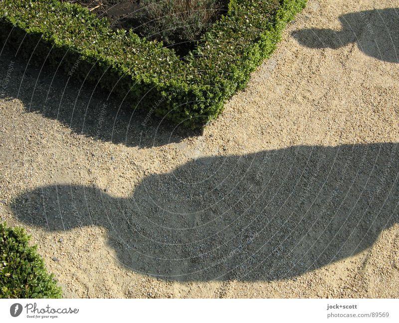 Kommen Mami und Papi wieder? Mensch Pflanze grün Erholung Denken Religion & Glaube Zeit Park Sträucher laufen Idee planen Wunsch Zukunftsangst Grenze Teilung