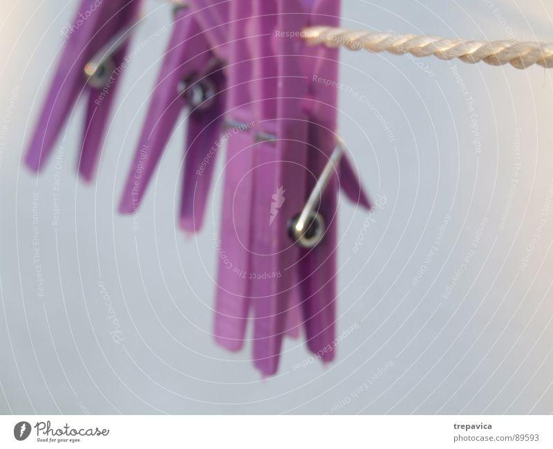 klammer Wäscheklammern aufhängen trocken violett trocknen Bekleidung festhalten Statue Erholung Seil blau Haushaltsführung