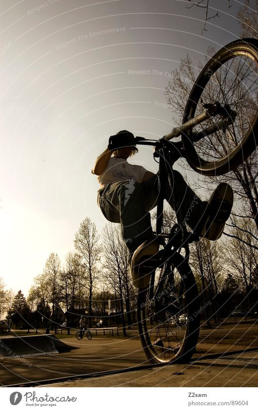 up in the sky IV Himmel springen fahren Fahrrad Mountainbike Aktion Sport Stil Jugendliche Physik Sommer Baum Sportpark Park Vergnügungspark stehen