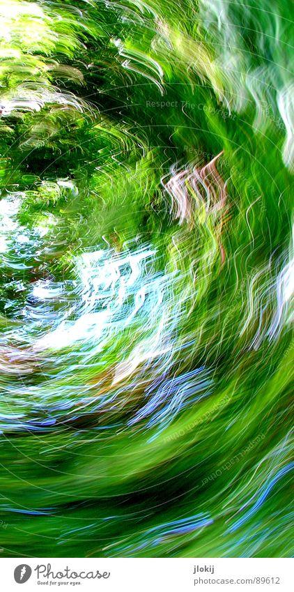 Green Rotation grün Drehung Langzeitbelichtung mehrfarbig Spielen Gras Seele Wellen drehen obskur Licht Natur Halbkreis blau Kontrast Garten Erde Rasen Himmel