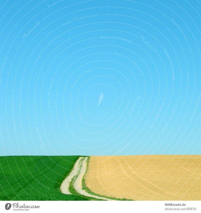 dieser Weg ... Himmel weiß grün blau Sommer ruhig Einsamkeit gelb Ferne Erholung Wiese Gefühle Frühling Freiheit Wege & Pfade Sand