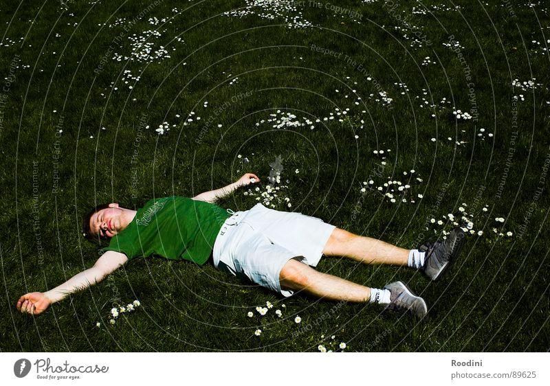 Hitzetod Mann Natur Sonne Blume Sommer Freude Ferien & Urlaub & Reisen ruhig Farbe Leben Erholung Wiese Freiheit Wärme Wetter schlafen