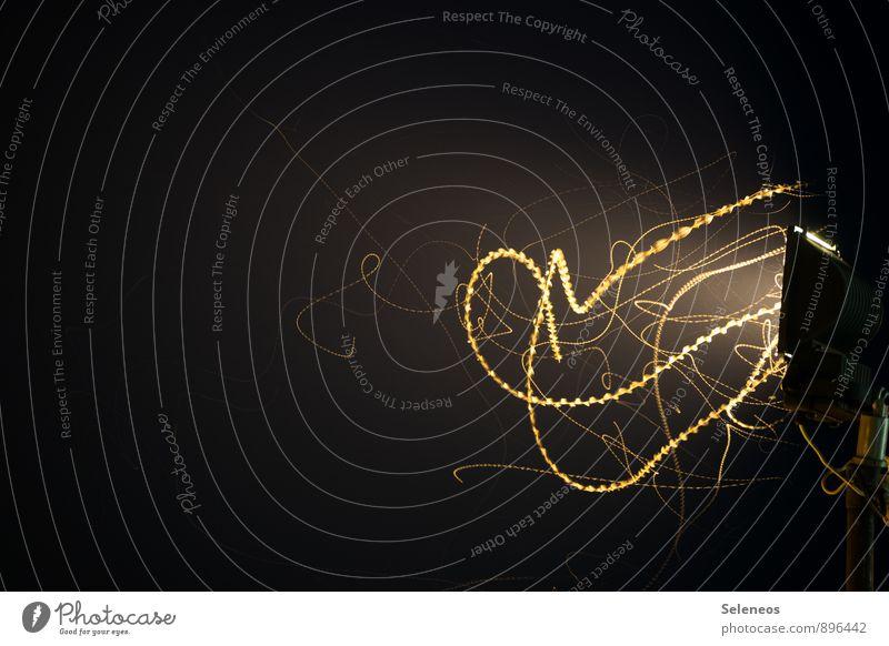Lichterkette Nachtleben Motte Tiergruppe Lampe Linie Streifen dunkel Lichterscheinung Lichtschein Lichtstrahl Lichtspiel Lichteffekt Farbfoto Außenaufnahme