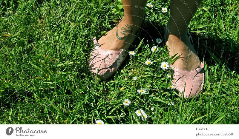 easy going weiß grün Sommer Wiese Gras Fuß Schuhe rosa Schriftzeichen Symbole & Metaphern Rasen Zeichen Schönes Wetter Tattoo Sonnenbad Indien
