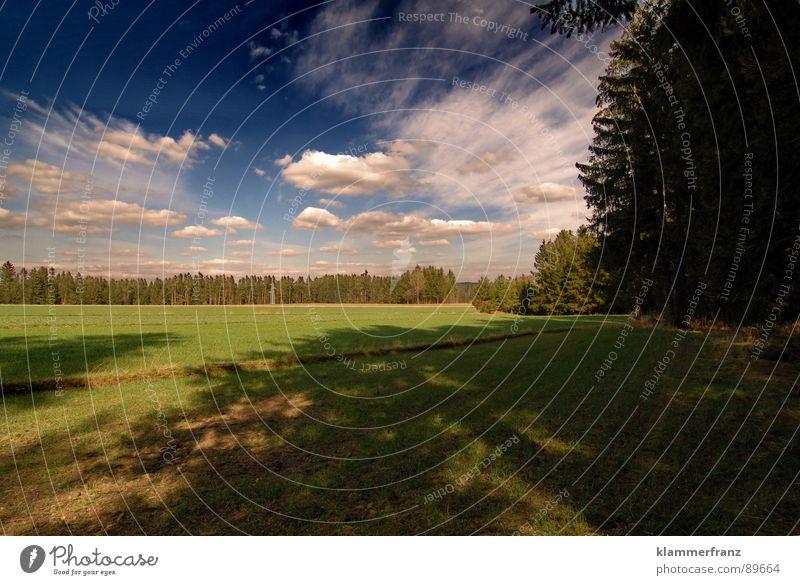 Große Ereignisse... Himmel weiß Baum Sonne grün blau ruhig schwarz Wolken Einsamkeit Ferne Wald dunkel Gras Landschaft braun
